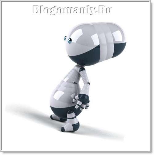 Устанавливаем файл robots.txt для wordpress